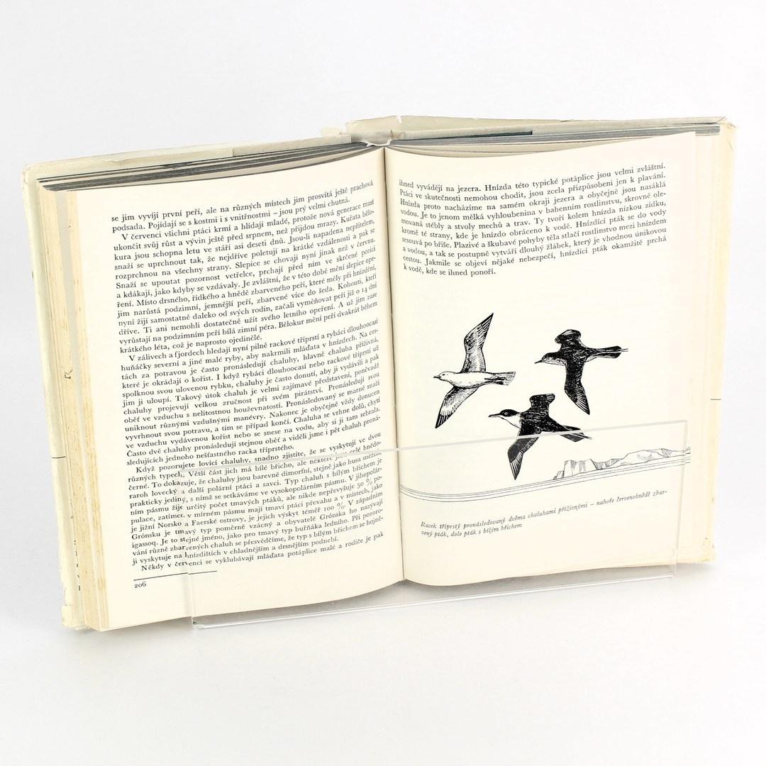 Naučná kniha Pod polárním sluncem