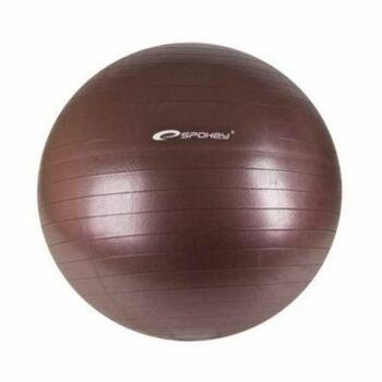 Gymnastický míč Spokey Fitball II 838339