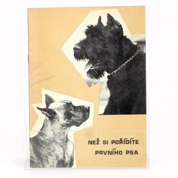 Jan Koller: Než si pořídíte prvního psa