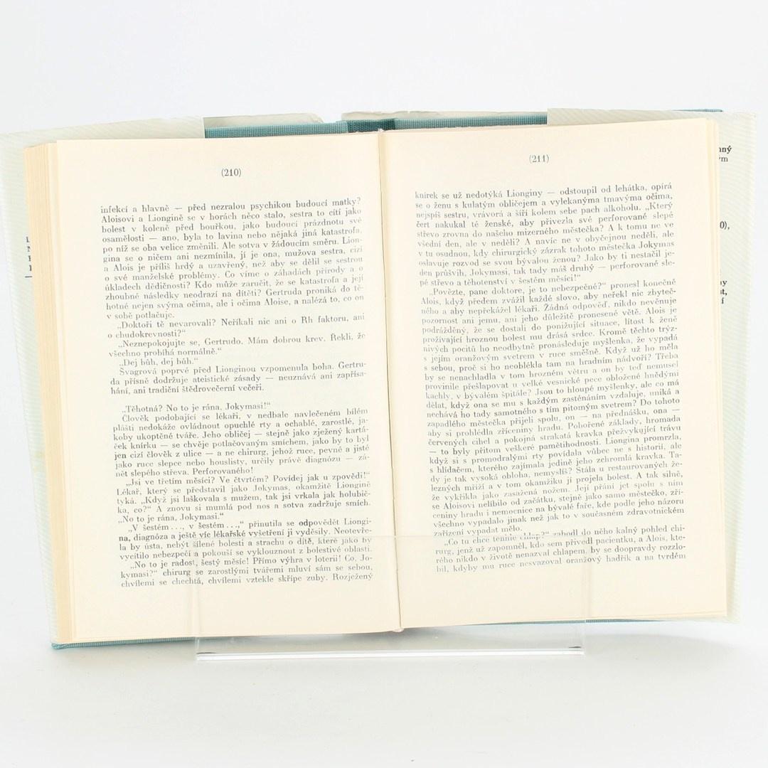 Kniha Cesta do hor - Mykolas Sluckis