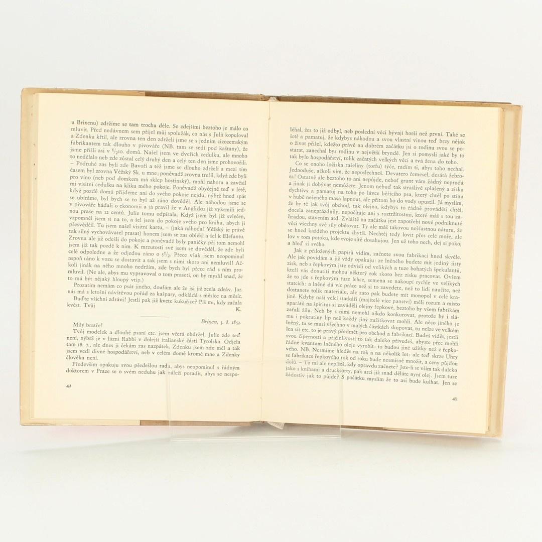 Kniha Brixenské listy Karla ...