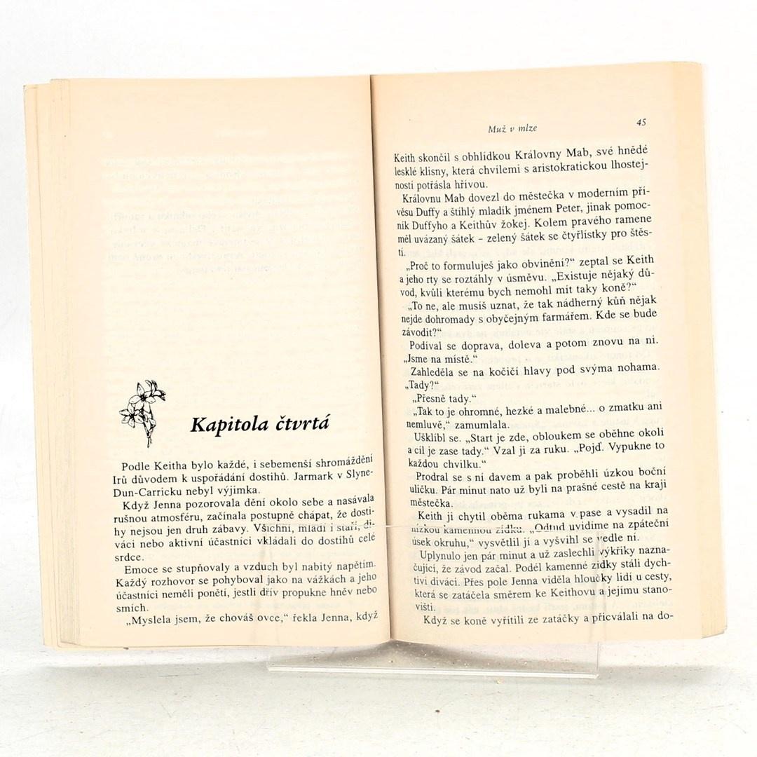 Kniha Muž v mlze