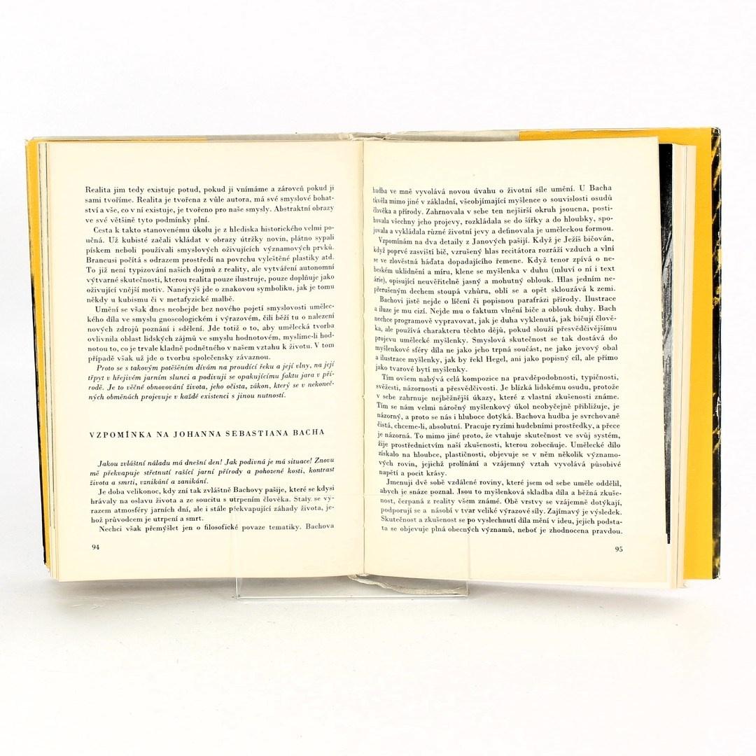Kniha Estetický zápisník