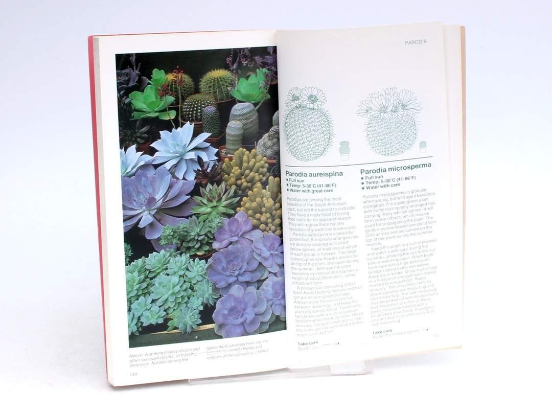 Příručka Cacti and succulents