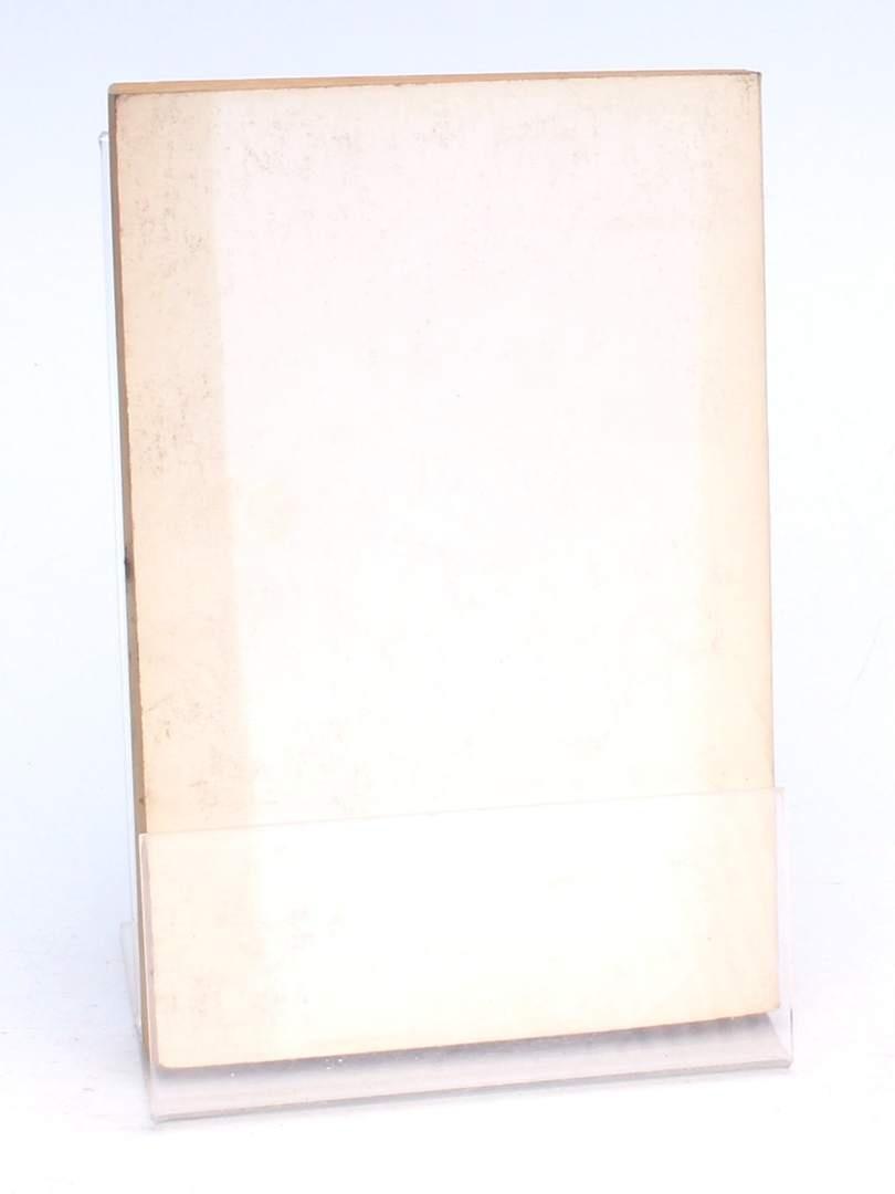 Kniha Stíny zločinů Karel Štorkán