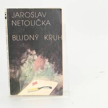 Kniha: Bludný kruh - Jaroslav Netolička