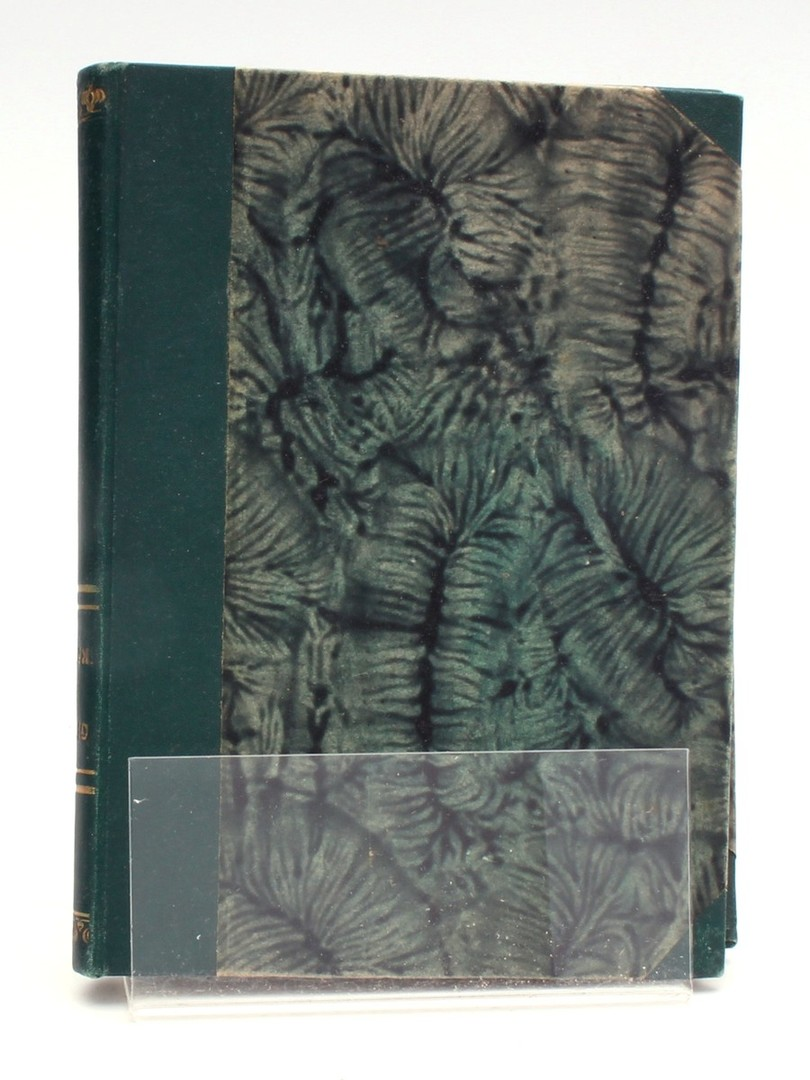 Kniha Elinor Glynová: Za skalami