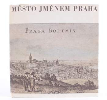 Kniha Karel Šiktanc: Město jménem Praha