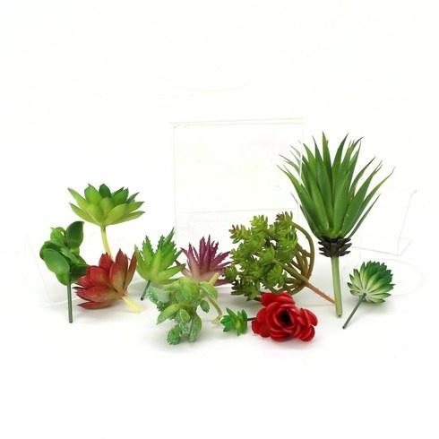 Sada Jowneel umělé rostliny sukulenty 15 ks