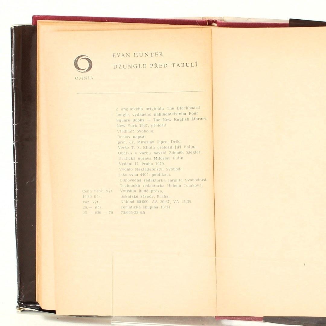 Kniha Z. Zapletal: Sen na konci rána