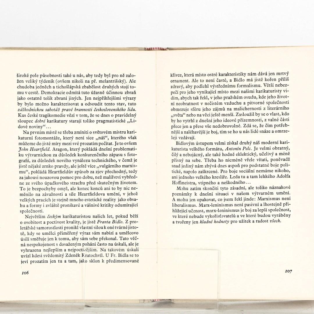 Kniha Umění a politika I.