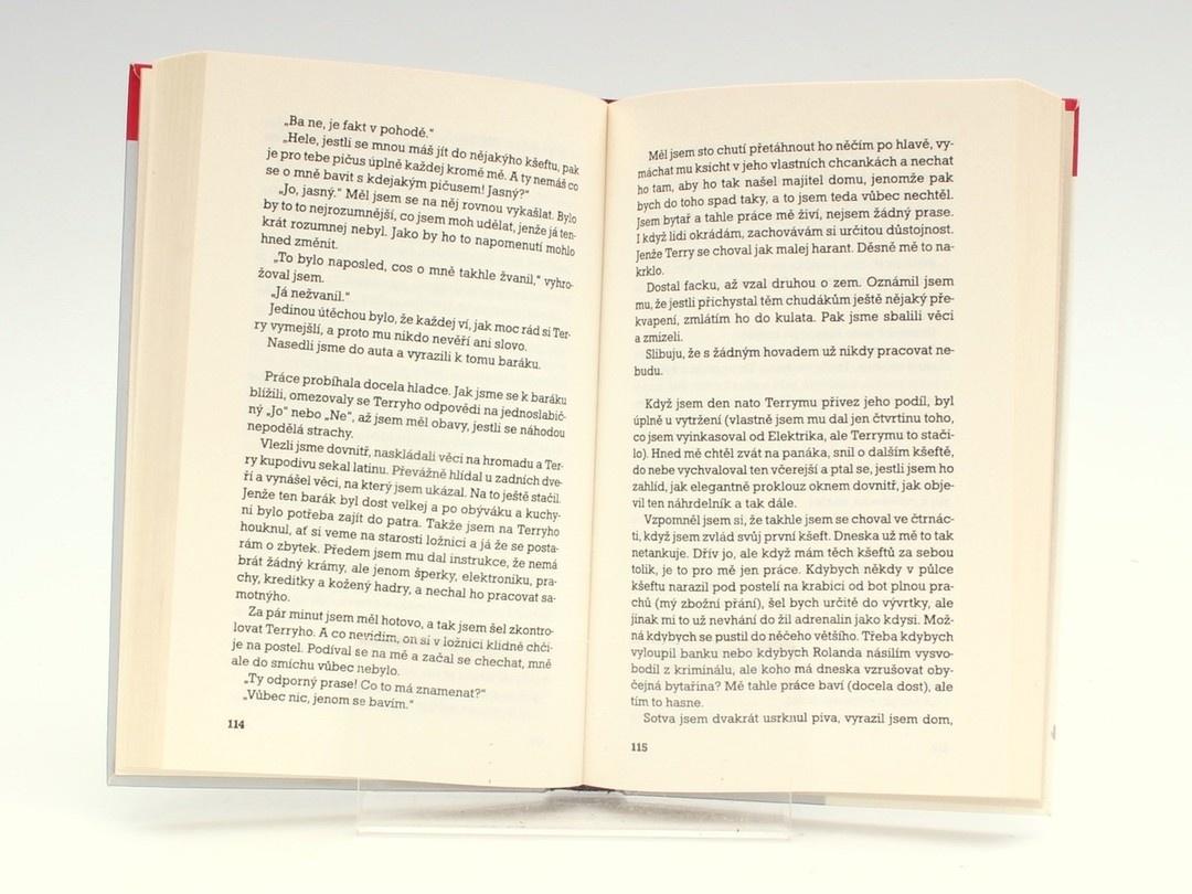 Kniha Danny King: Deník zloděje