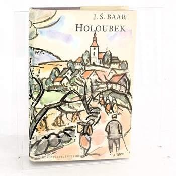 Kniha Jindřich Šimon Baar: Holoubek