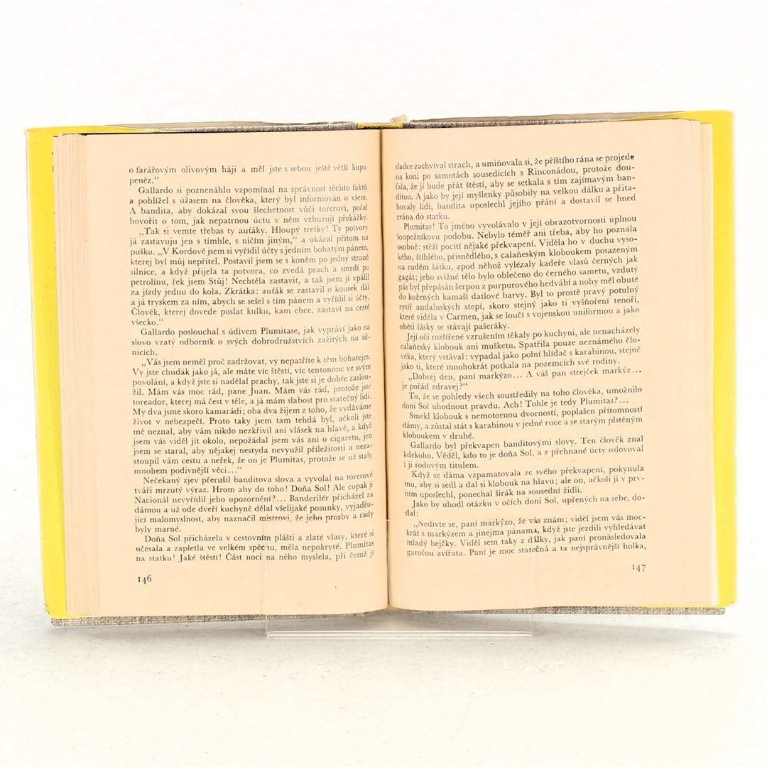 Kniha Vicente Blasco Ibaňez: Krev a písek