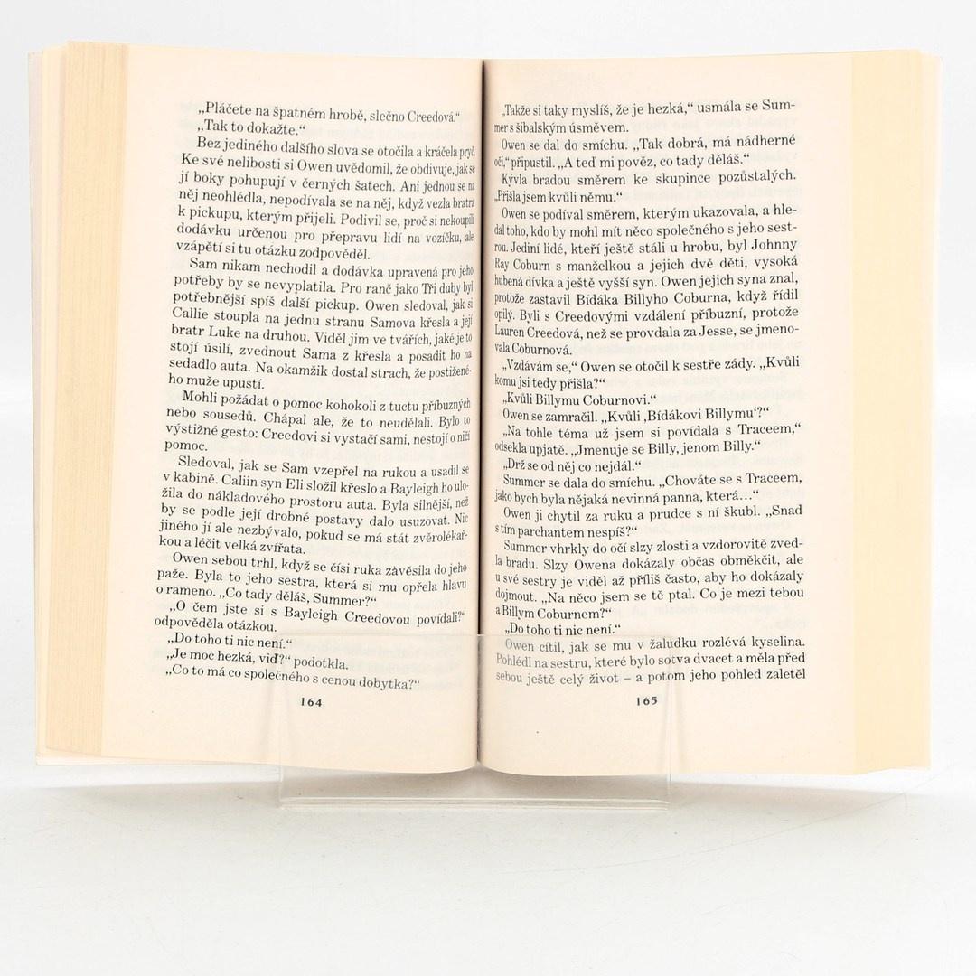 Kniha Joan Johnston: Drsný cizinec