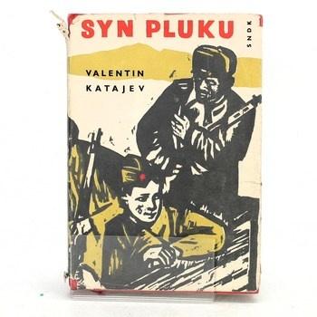 Valentin Petrovič Katajev: Syn pluku: Povídka