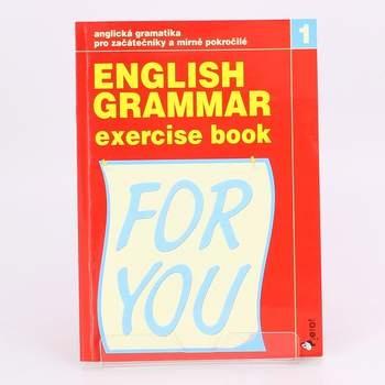 Pracovní sešit English grammar