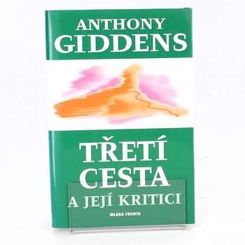 Anthony Giddens: Třetí cesta a její kritici