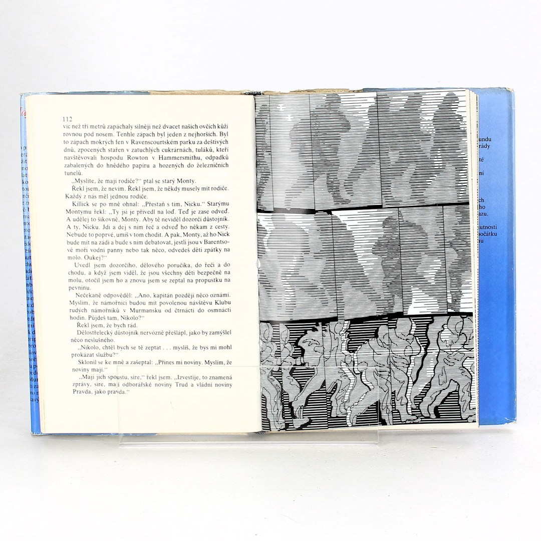 Kniha Stanley Bonnett: Skoč, hochu, skoč