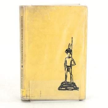 Kniha Dobrodružství malého indiana