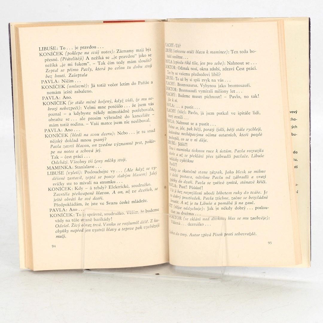 Kniha Třetí sestra Pavel Kohout
