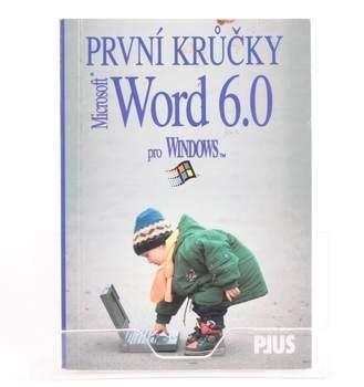 První krůčky s MS Word 6.0 pro Windows