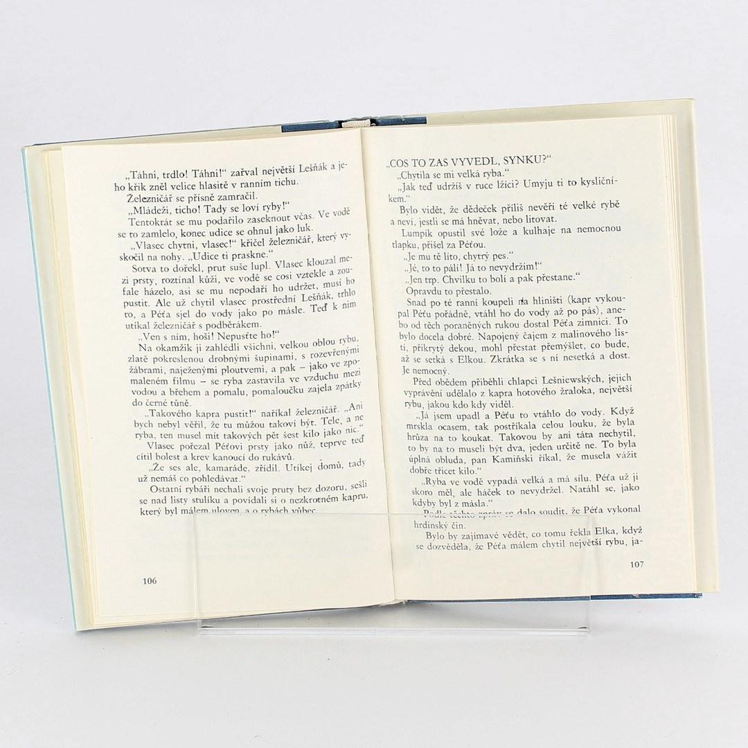 Kniha Dům zarostlý vínem Ewa Nowacká
