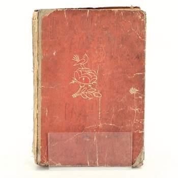 Kniha Báchorky Bož.Němcové