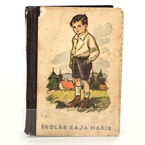Kniha Felix Háj: Školák Kája Mařík 6. díl