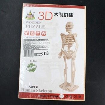 3D dřevěné puzzle Lamps lidská kostra