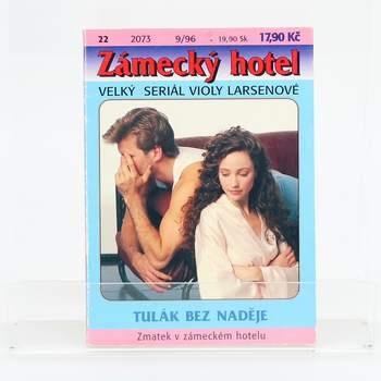 Kniha Zámecký hotel- Tulák bez naděje