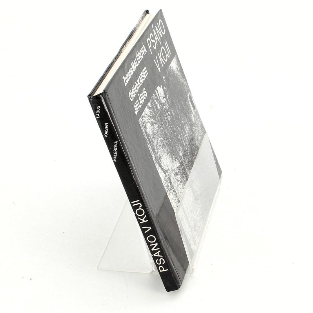 Kniha Zuzana Maléřová: Psáno v kóji
