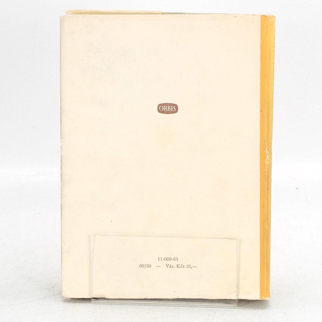 Kniha Základy a praxe moderního divadla