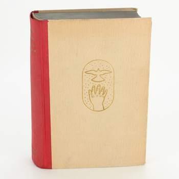 Kniha Romance o chámu Dynybylovi