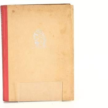 Kniha Hanička a její drůžičky