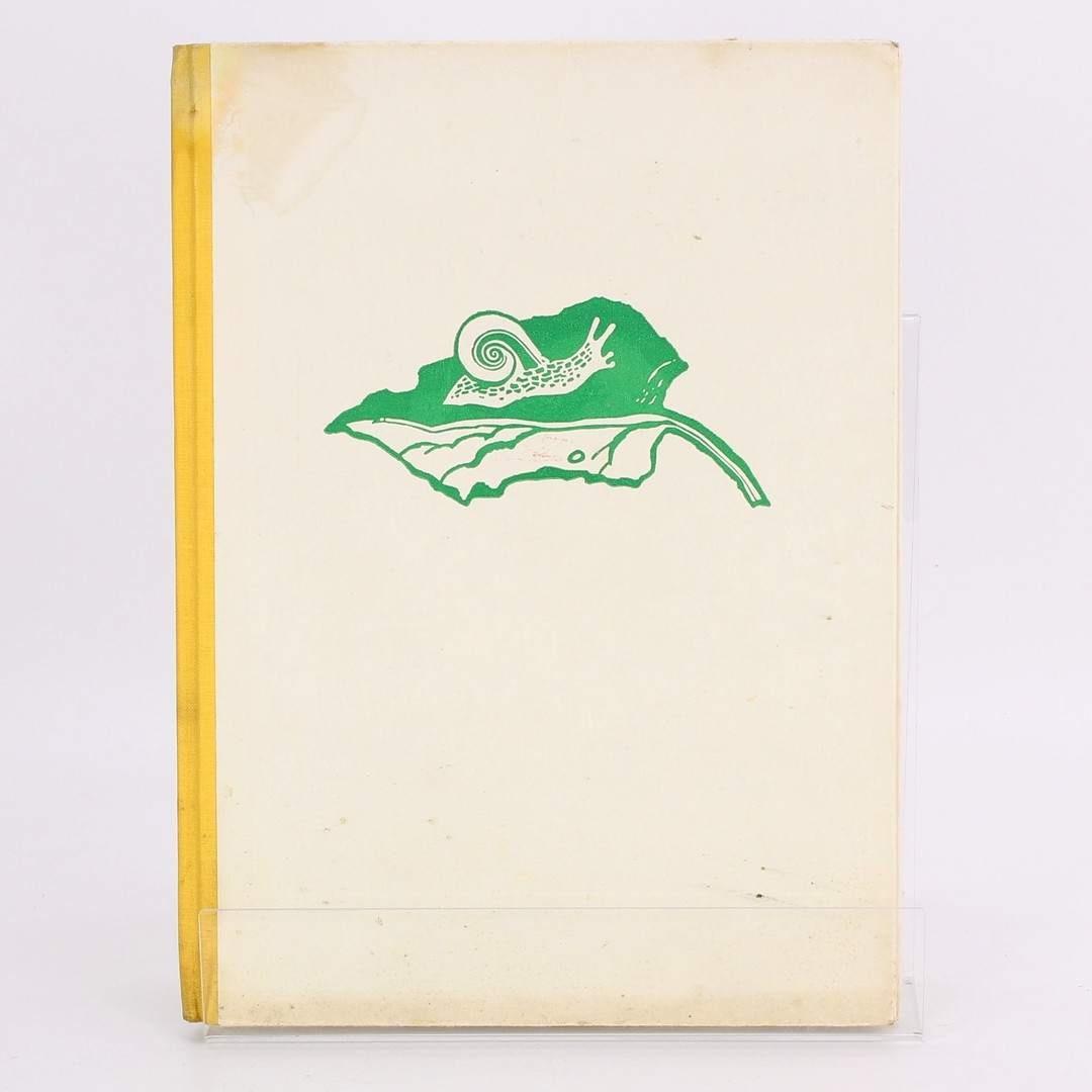 Kniha Zvířátka a lidé K.V.Rais