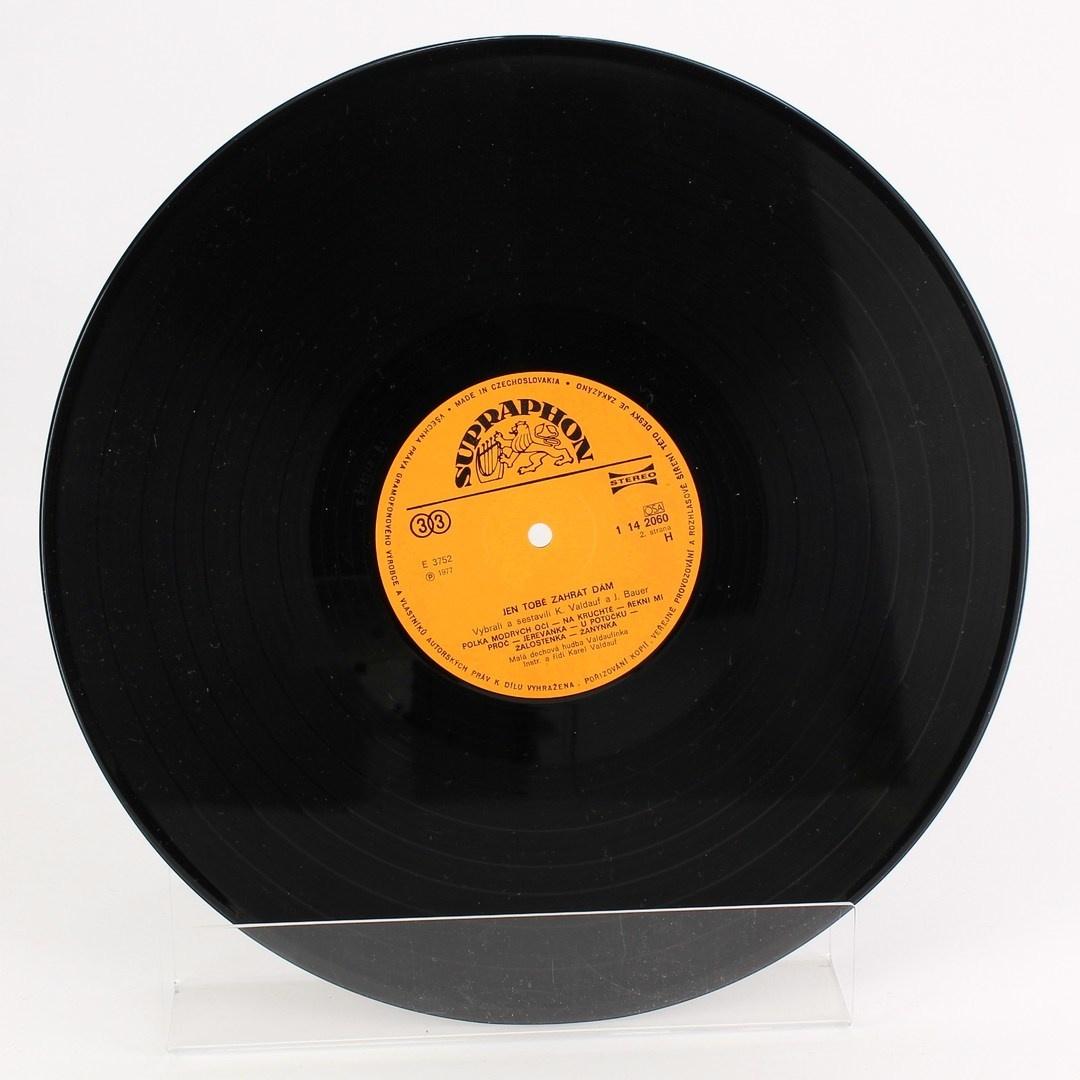 Gramofonová deska Jen tobě zahrát dám