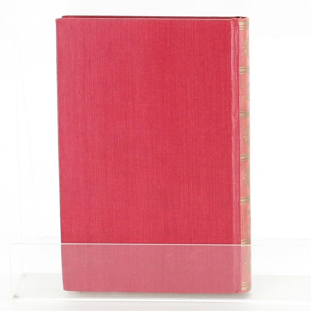 Kniha Dějiny české první díl