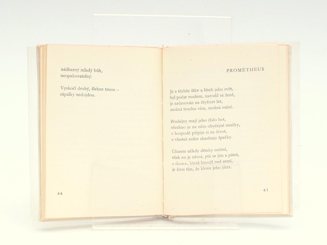 Kniha M. Florian: Závrať