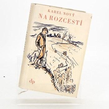 Karel Novák: Na rozcestí