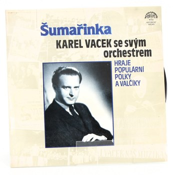Gramofonová deska Karel Vacek Šumařinka