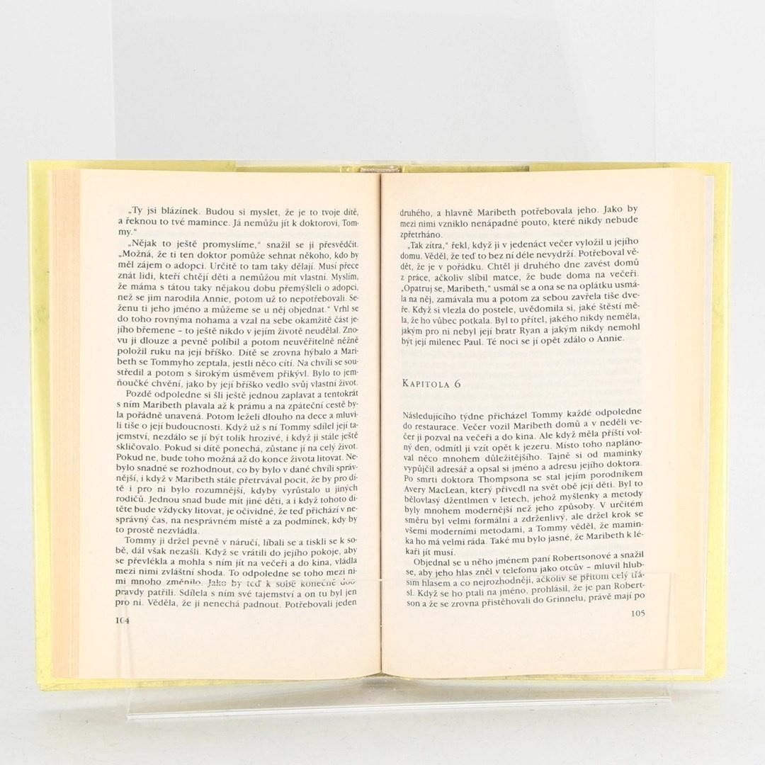 Kniha Danielle Steel: Dar