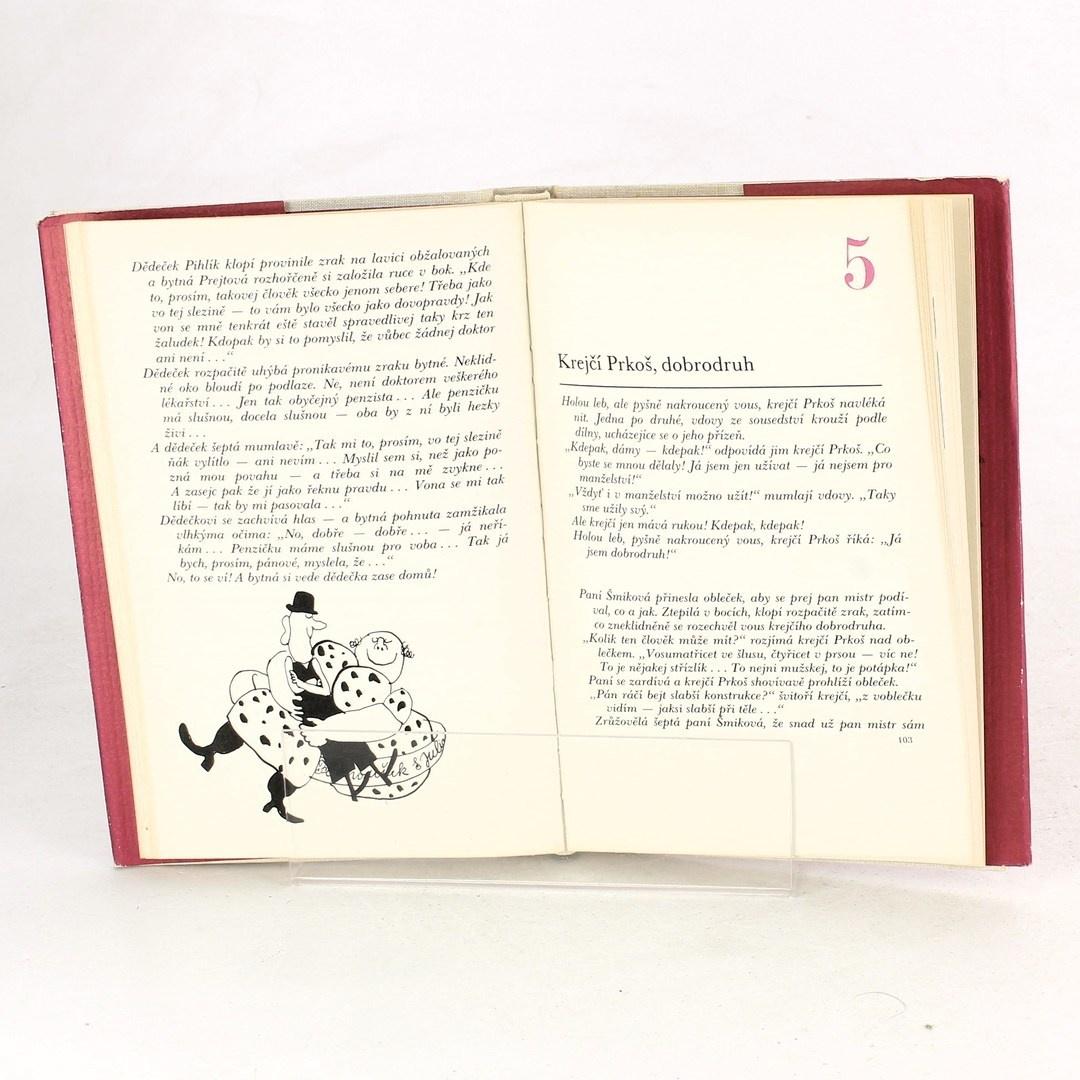 Kniha František Němec: Paničky a dámy