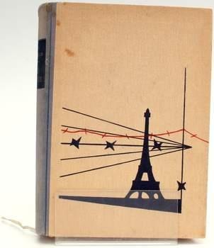 Kniha Ilja Erenburg: Pád Paříže
