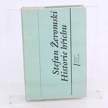 Kniha Stefan Źeromski: Historie hříchu