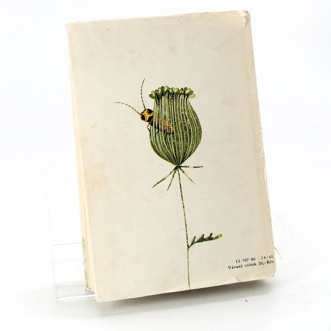 Kniha V mámině náručí František Nechvátal
