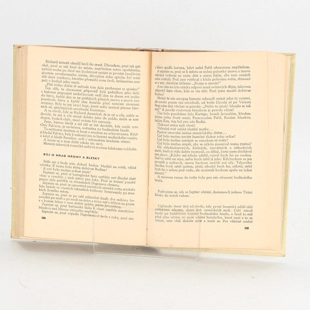 Kniha Mór Jókai: Synové muže kamenného srdce