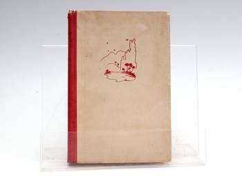 Kniha Kristmann Gudmundsson: Děti Země
