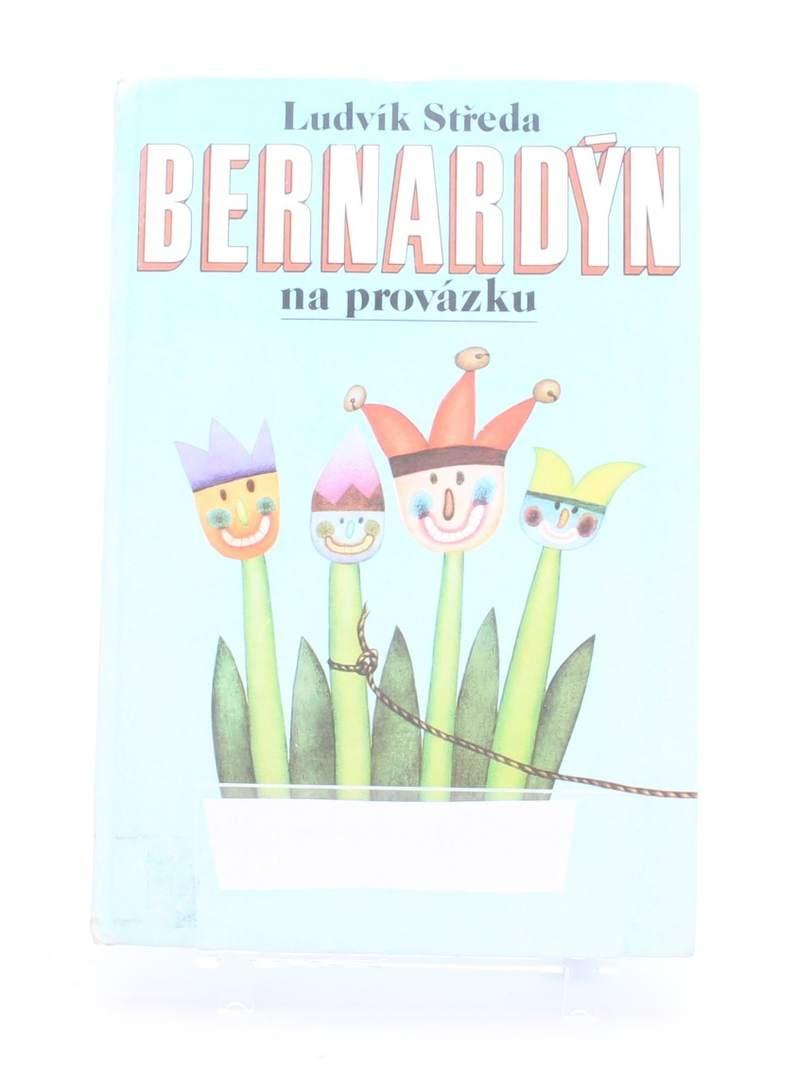 Kniha Bernardýn na provázku