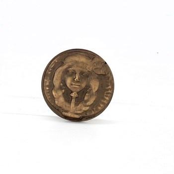 Pamětní bronzová medaile 6,5 cm